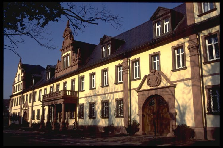 web_Kreuzwertheim.jpg